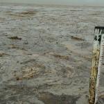 17 cidades da região recebem chuvas nesta quarta-feira e animam caririzeiros