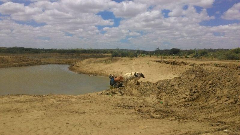 Quase 88% das cidades da PB estão em situação de emergência por conta da seca, Taperoá esta entre elas.